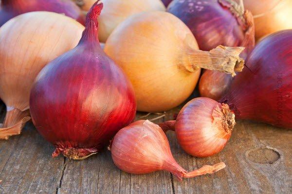 Cómo usar la cebolla y su jugo para la caspa